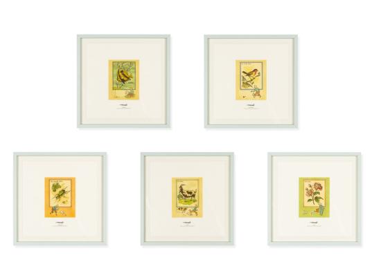 5 Tim und Struppi-Lithographien im Rahmen.