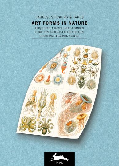 Ernst Haeckel. Kunstformen der Natur. Sticker und Etiketten.