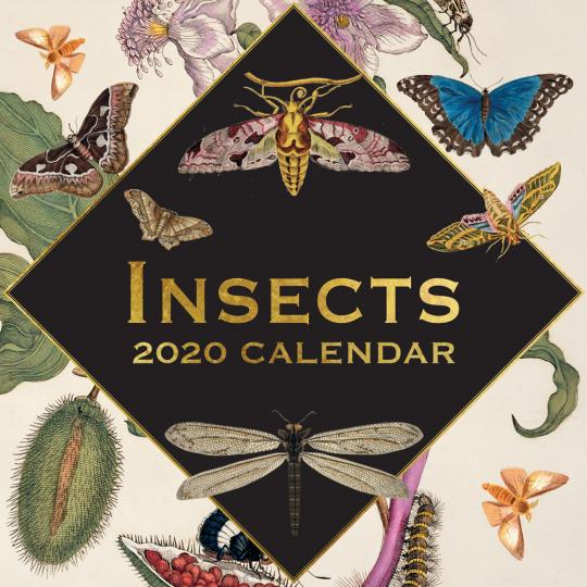 Fantastische Insekten. Wandkalender 2020.