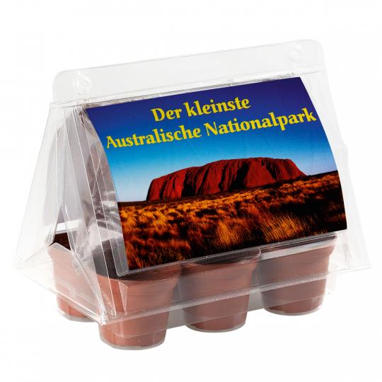 Mini-Gewächshaus »Australischer Nationalpark«.