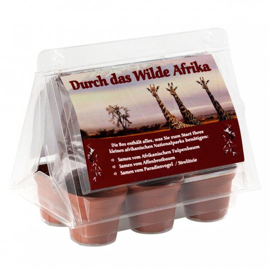 Mini-Gewächshaus »Durch das wilde Afrika«.