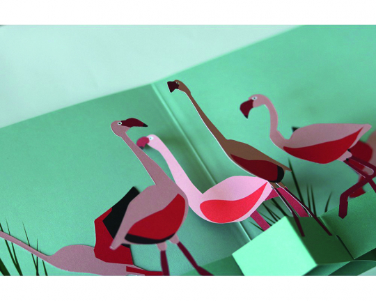 Pop-up-Grußkarte »Flamingos«.