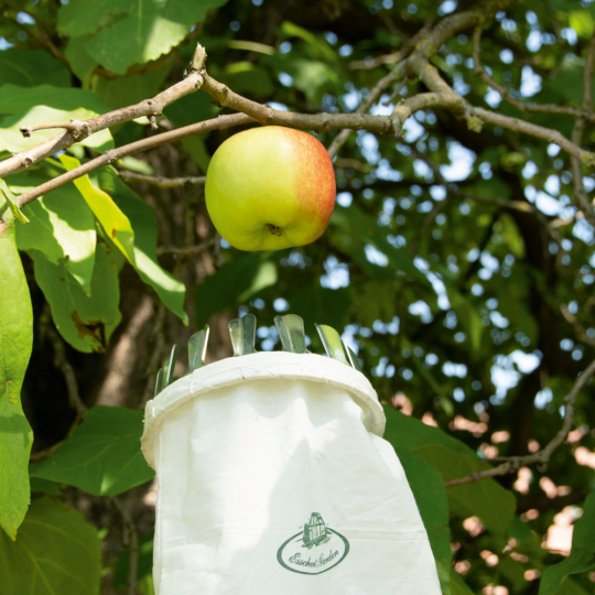 Praktischer Obstpflücker.