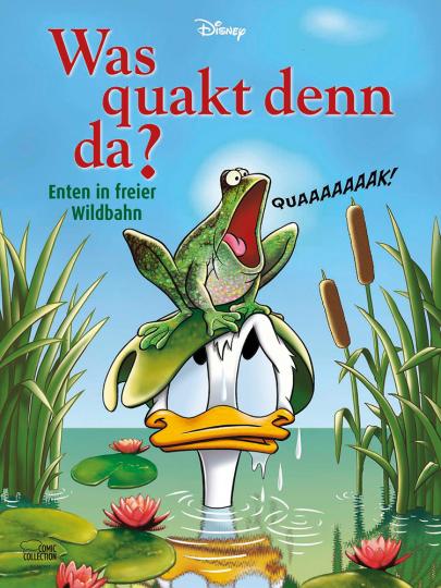 Was quakt denn da? Enten in freier Wildbahn.