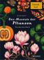 Das Museum der Pflanzen. Postkartenbuch. Bild 1