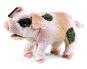 Grunzendes Schweinchen Handpuppe. Bild 1