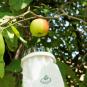 Praktischer Obstpflücker. Bild 1