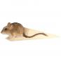 Türstopper Maus. Bild 1