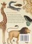 Animalium. Postkarten-Set. Bild 2
