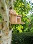 Eichhörnchen-Futterhaus. Bild 2
