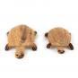 Holztier Schildkröte - ein Spendenprojekt. Bild 2