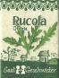 Bio-Saatgut Rucola »Grazia« (Diplotaxis tenuifolia). Bild 2