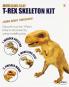 T-Rex Skelett. Modelliermasse. Bild 2