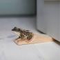 Türstopper Frosch. Bild 2