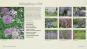 Ein Jahr in meinem Garten. Inspirierende Pflanzkombinationen für jeden Garten. Bild 3