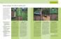 Gartenjahr für Einsteiger. Schritt für Schritt zum grünen Paradies. Bild 3