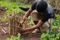 Holztier Schildkröte - ein Spendenprojekt. Bild 3