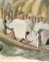 Jenseits von Brasilien. Johann Natterer und die ethnografischen Sammlungen der österreichischen Brasilienexpedition 1817 bis 1835. Bild 3
