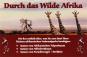 Mini-Gewächshaus »Durch das wilde Afrika«. Bild 3