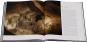 Als der Mensch die Kunst erfand. Eiszeithöhlen der Schwäbischen Alb. Bild 4