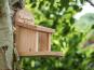 Eichhörnchen-Futterhaus. Bild 4