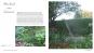 Ein Jahr in meinem Garten. Inspirierende Pflanzkombinationen für jeden Garten. Bild 4
