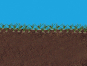 Hochwertige Gräsermischung »Wunder-Rasen«. Bild 4