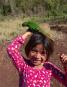 Holzvogel Tukan. Bild 4