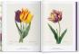 Redouté. Das Buch der Blumen. Bild 6