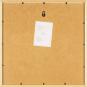 5 Tim und Struppi-Lithographien im Rahmen. Bild 7