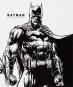 Batman. Eine Geschichte in Bildern. A Visual History. Bild 7