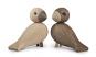 Vogelpaar »Die Unzertrennlichen«. Bild 7