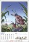 Werner Kalender 2022. Bild 7